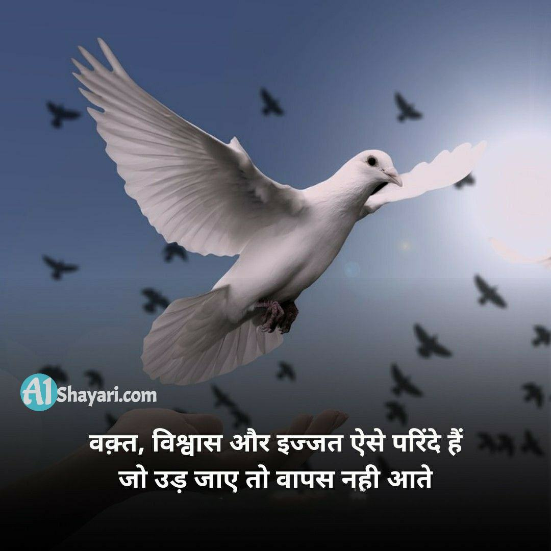 True Facts Of Life Quotes In Hindi
