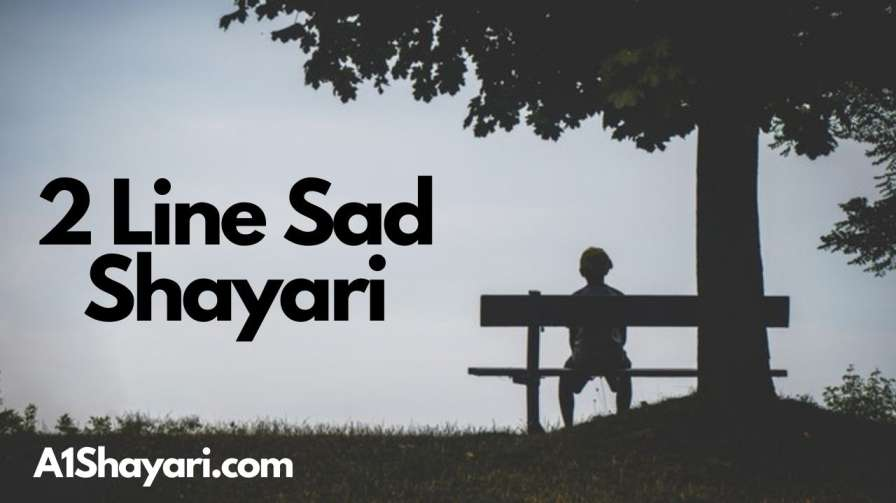 [Best 100+]» 2 Line Sad Shayari In Hindi With Images