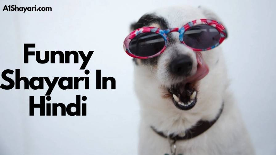 [Best 100+] Funny Shayari In Hindi [Funny Mems, Status, Quotes]